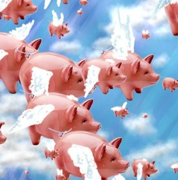 so_pigs_do_fly.jpg