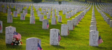 Memorial Day gratitude from Pres. Trump and us all